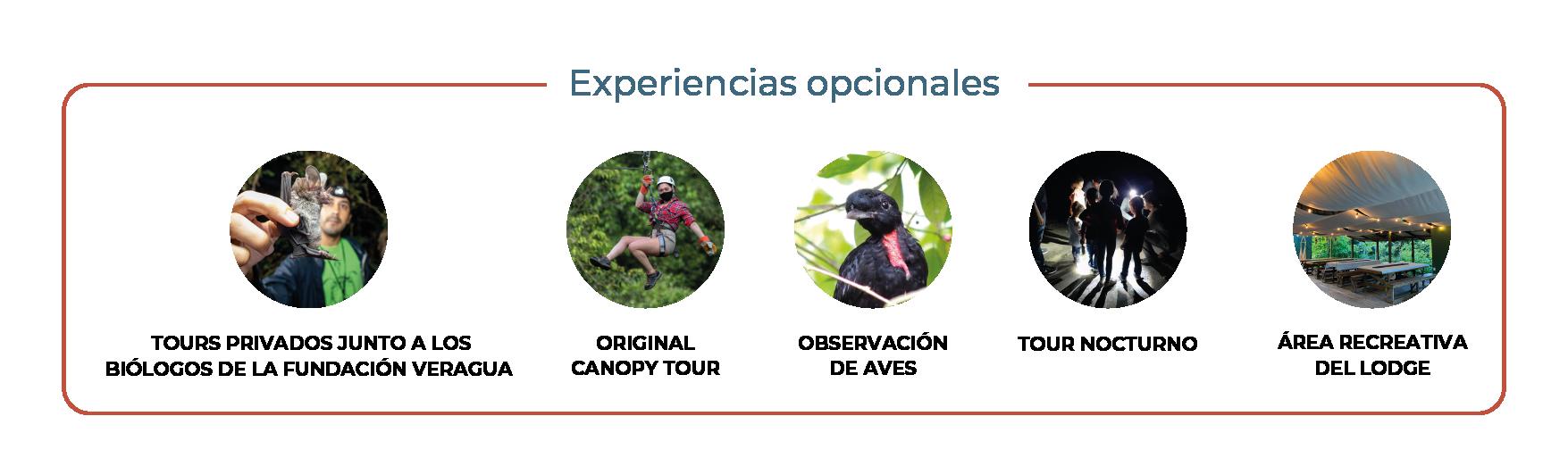 Opcional_español